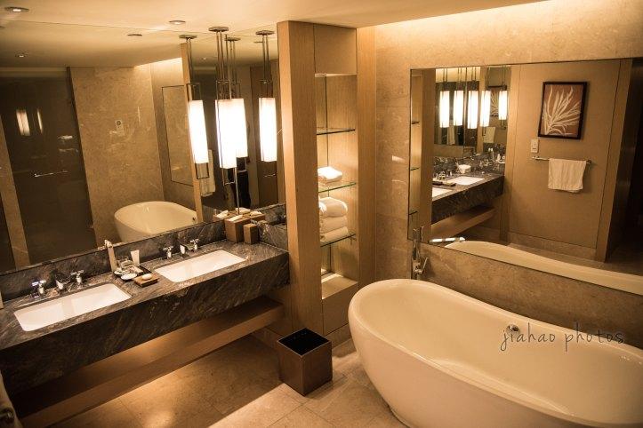 MBS Toilet - WM