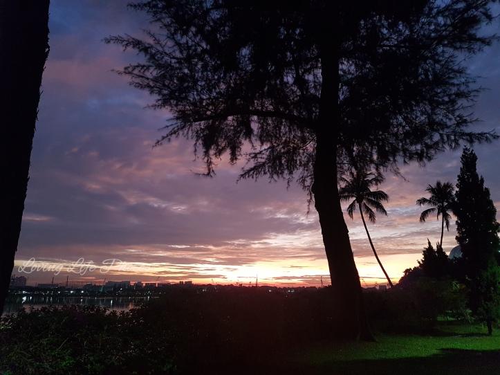 Sunrise - WM